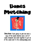 Bones Matching-Skeletal System Activity