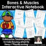 #summerwishes Bones & Muscles Interactive Notebook