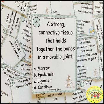 Bones, Muscles, and Skin Task Cards
