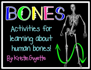 Bones {Skeletal System}