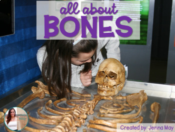 Bones & Skeletons NO PREP Fall/October Mini Unit