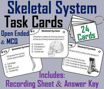 Bones Task Cards/ Skeletal System Task Cards (Human Body Systems Task Cards)