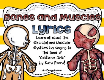 Bones and Muscles Song Lyrics (Skeletal and Muscular Systems)