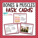 Bones and Muscles Task Cards