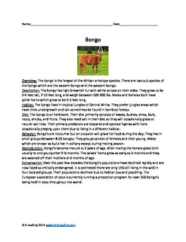 Bongo - antelope endangere species - article questions activitiesd