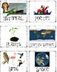 Basket Labels and Matching Book Labels for the Classroom Library
