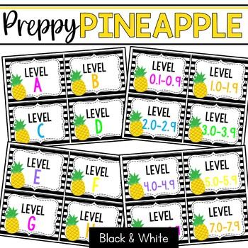 Book Bin & Book Basket Labels Editable: Preppy Pineapples Black & White