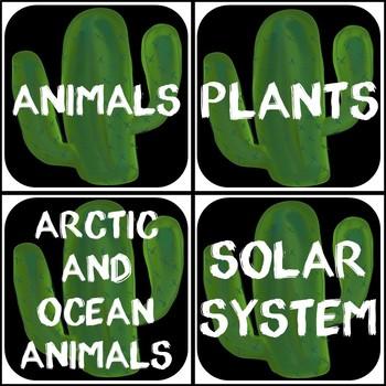Book Bin Labels (Cactus Theme)