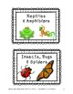 22 Non-Fiction Simple Book Bin Labels for Elementary