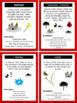 Book Genre Posters & Mini Reader's Notebook Sheets - Dr. Seuss Tribute Colors