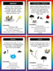 Book Genre Posters & Mini Reader's Notebook Sheets - Rainbow