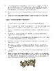 Book Report Focus Topics, Activities and Handouts