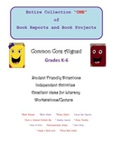 Book Reports and Book Projects: Collection 1