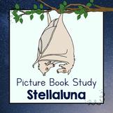 Book Study: Stellaluna