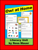 Owl at Home Reading Comprehension Activities