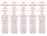 Because of Winn-Dixie edition of Bookmarks Plus—Aids under