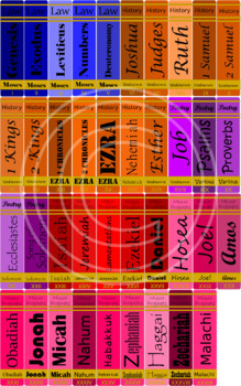 Books Of The Bible Book Spine Printable With Title, Author, and Category