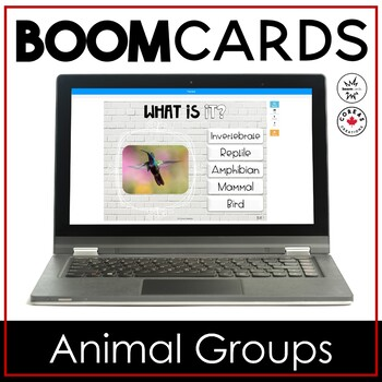 Boom Cards | Animal Groups