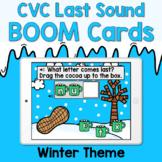 Boom Cards - CVC Last Sounds - Winter Theme