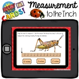 Boom Cards - Measurement to the Inch - Insects - Distant Learning
