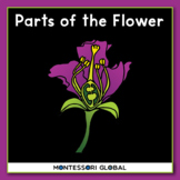 Montessori - Flower 3 Part Cards, a Definition Booklet & Interactive Boom Cards