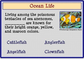 Boom Cards™ Ocean Life & Four Puzzles