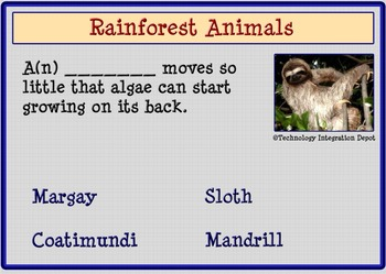 Boom Cards™ Rainforest Animals & Four Puzzles