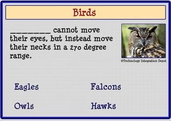 Boom Cards™ Wild Birds & Four Puzzles