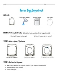 Borax Crystal Egg Experiment Data Sheets