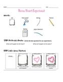 Borax Crystal Heart Experiment & Data Sheet