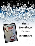 Borax Snowflake Experiment/ Holiday Science