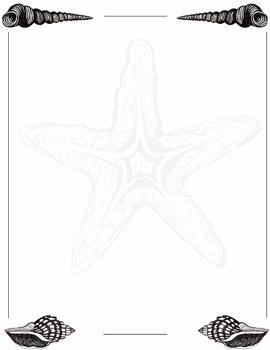 Border-2-hand drawn sea shells bottom and top