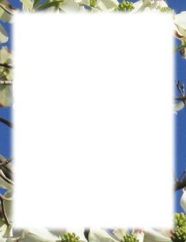 Border-Dogwood flowers