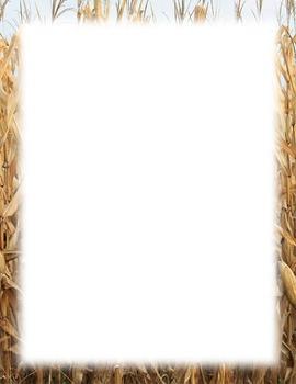 Border-corn