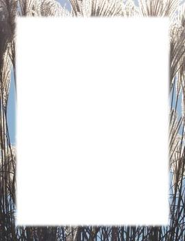 Border-reeds of grasses