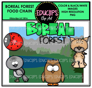Boreal Forest Food Chain Clip Art Mini Bundle {Educlips Clipart}