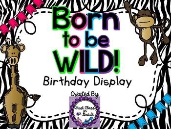 Born to be Wild: Birthday Display