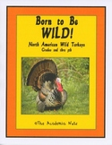 Born to be Wild: North American Wild Turkey