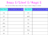 Bossy E/Silent E/Magic E Activity Pack