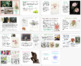 Botanical drawing and painting: Margaret Mee research and recording task
