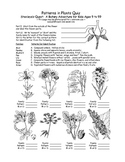 Botany Adventure Lesson Plan: Plant Identification and Evolution