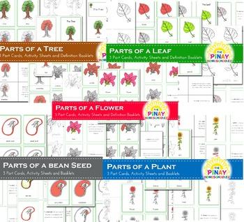 Botany Bundle Pack