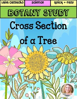 Botany: Cross Section of a Tree