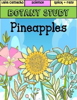Botany: Pineapples