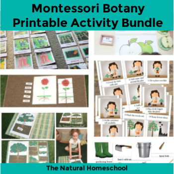 Botany for Kids Printable Bundle {Activities, Printables, Ideas, Resources}