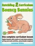Bouncy Bunnies: creative art and math