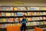 Boy Selecting a Book Stock Photo #255