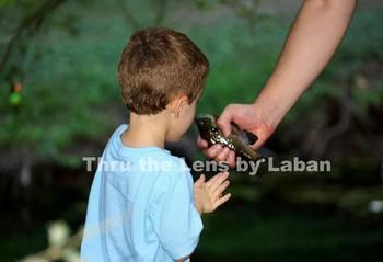 Boy Touching Fish Stock Photo #197