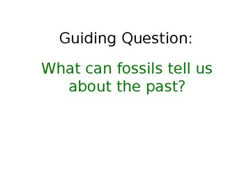 Boy, Were We Wrong About Dinosaurs PowerPoint Activities with Journeys Grade 3