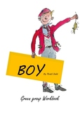 Boy by Roald Dahl Activities and Worksheets
